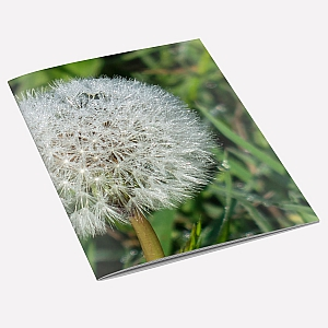 view Dandelion Dew A6 Notebook details