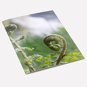 view Fern Notebook details