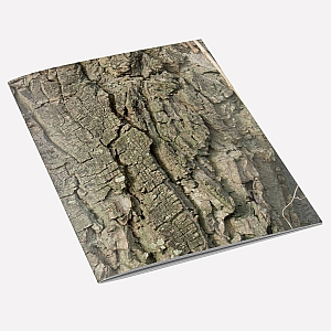 view Walnut Tree Bark Notebook details