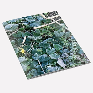 view Frosty Leaves Notebook details