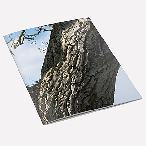 view Walnut Tree A6 Notebook details