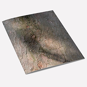 view Sycamore Bark A6 Notebook details
