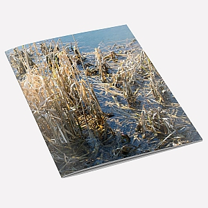 Winter Rushes A6 Notebook