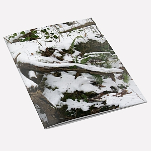 view Snow Tree A6 Notebook details