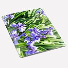 Bluebells Notebook A6