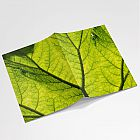 Leaf Notebook A6