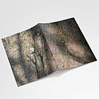 Sycamore Bark A6 Notebook