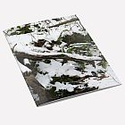 Snow Tree Notebook